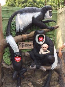 放課後デイ,宝塚市,遠足,動物園,コミュニケーション